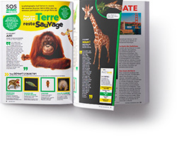 doublepage National Geographic Kids